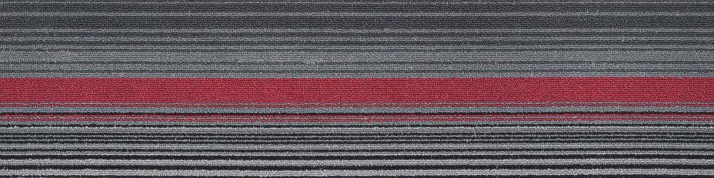 BMT 6008
