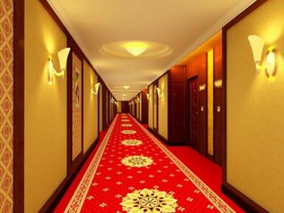 Thảm hành lang khách sạn 1225   Tham trai san
