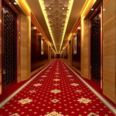 5 mẫu thảm hành lang khách sạn đẹp nhất. Khi kích thước không còn là vấn đề Tin tức   Tham trai san